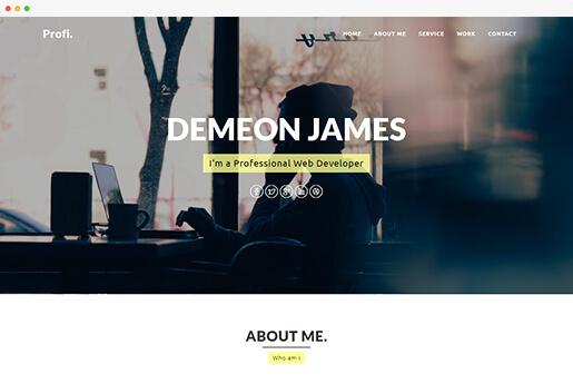 profi personal portfolio website template